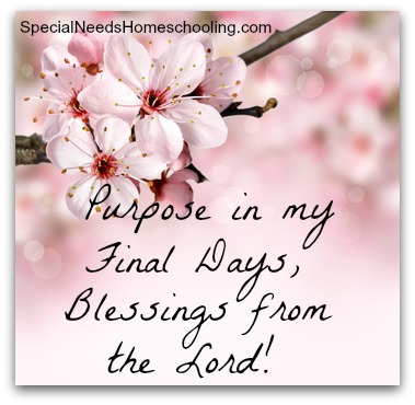 Purpose in my final days, blessings from the Lord