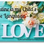 Routine is my Child's Love Language